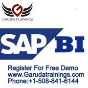 SAP BWBI Training Online In Chicago