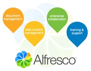 Alfresco solutions and support services