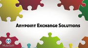Anypoint exchange solutions and services